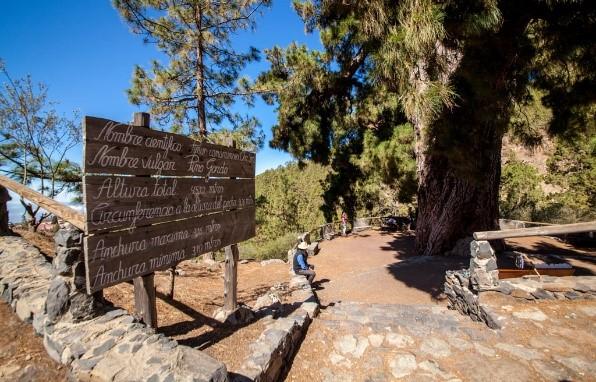 Pueblos con encanto en Tenerife Vilaflor